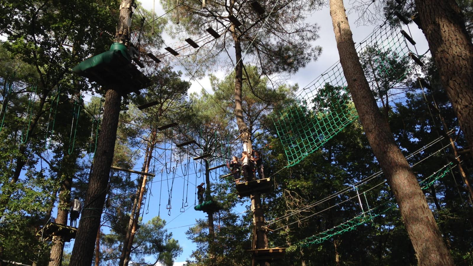 Accrobranche en Forêt de Chinon