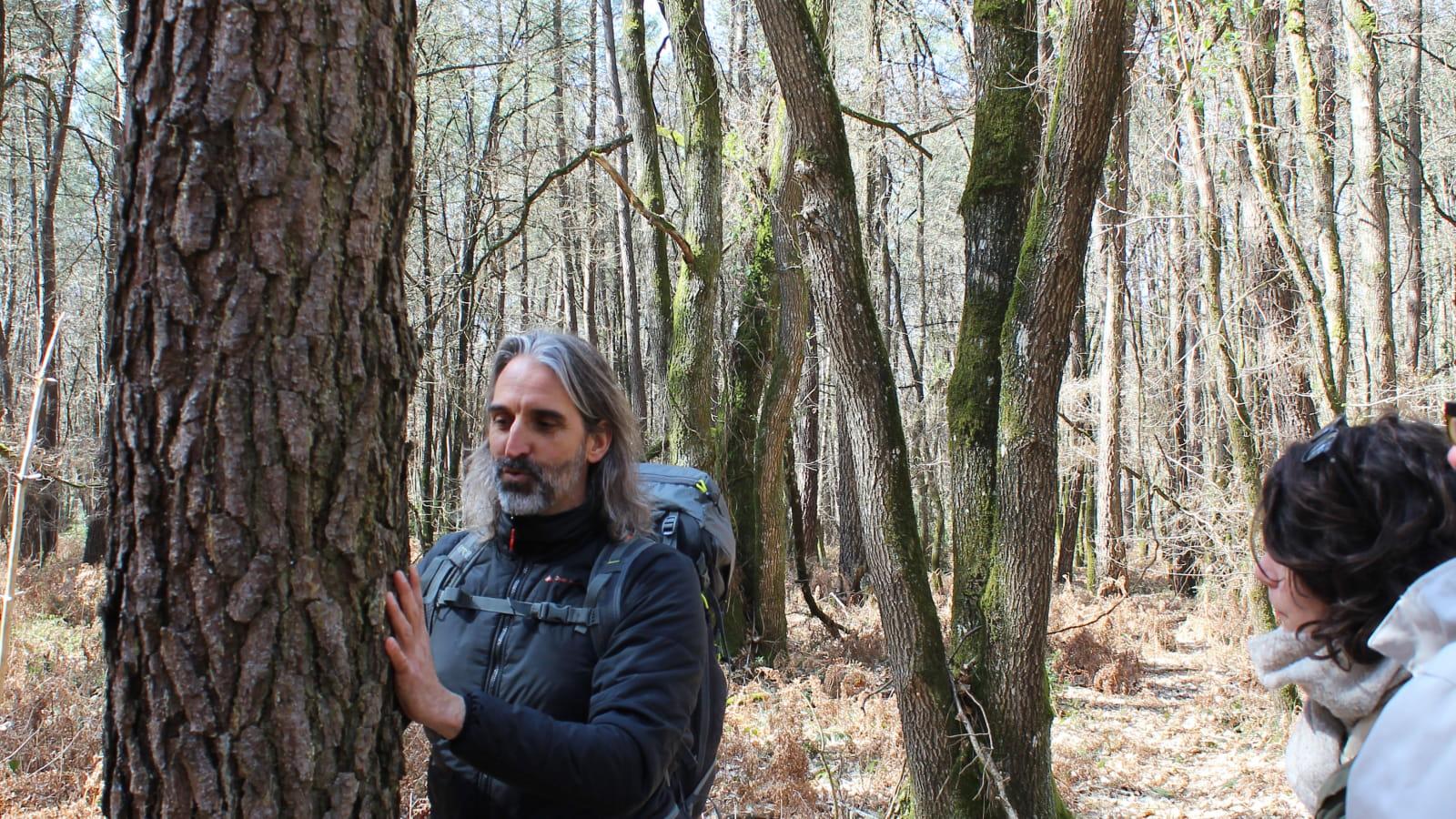 Omtani, Bain de forêt