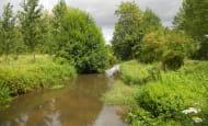 Around the village of Champigny-sur-Veude