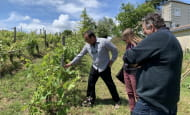 ACVL-Chinon-loire-winery-tours--6-