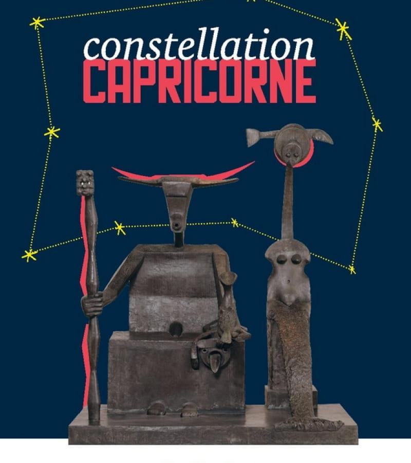 constellation capricorne