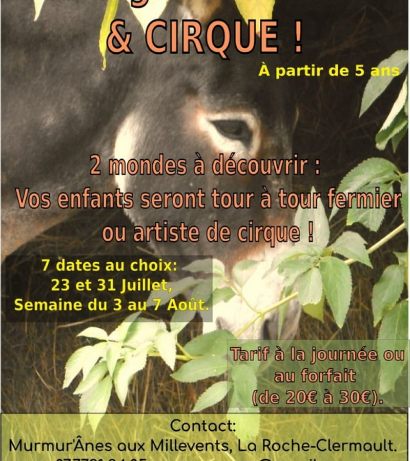 Flyer stage ferme et cirque (2)