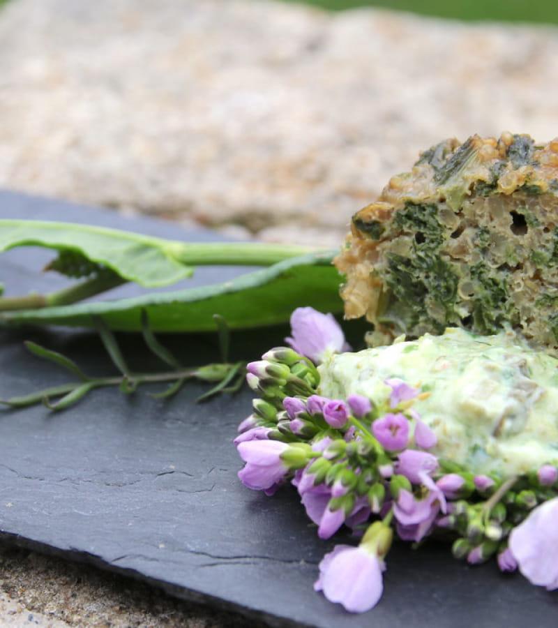 sorties-nature-plantes-sauvages-comestibles-en-touraine-37-val-de-loire