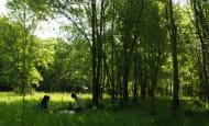 Residence-d-artistes---Ecomusee-du-Veron--2-