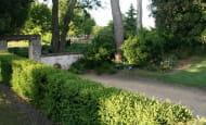 une allée dans le parc