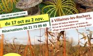 affiche-toussaint-2020-2
