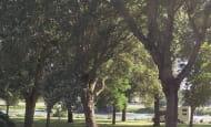 Camping des bords de vienne-parc