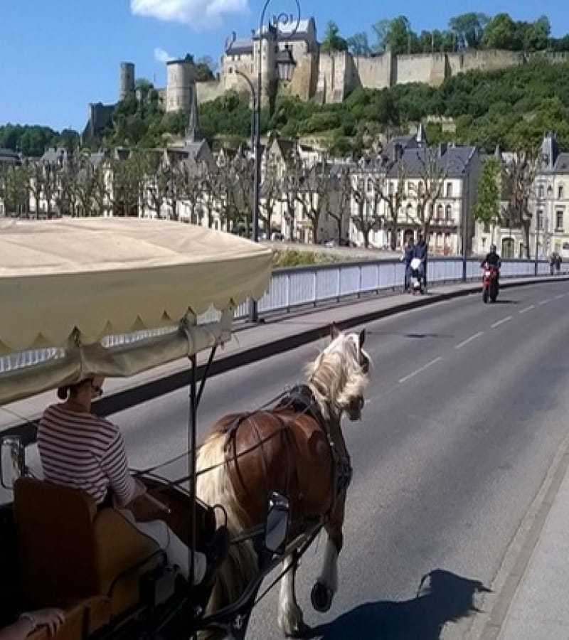 les attelages de Villandry-Chinon