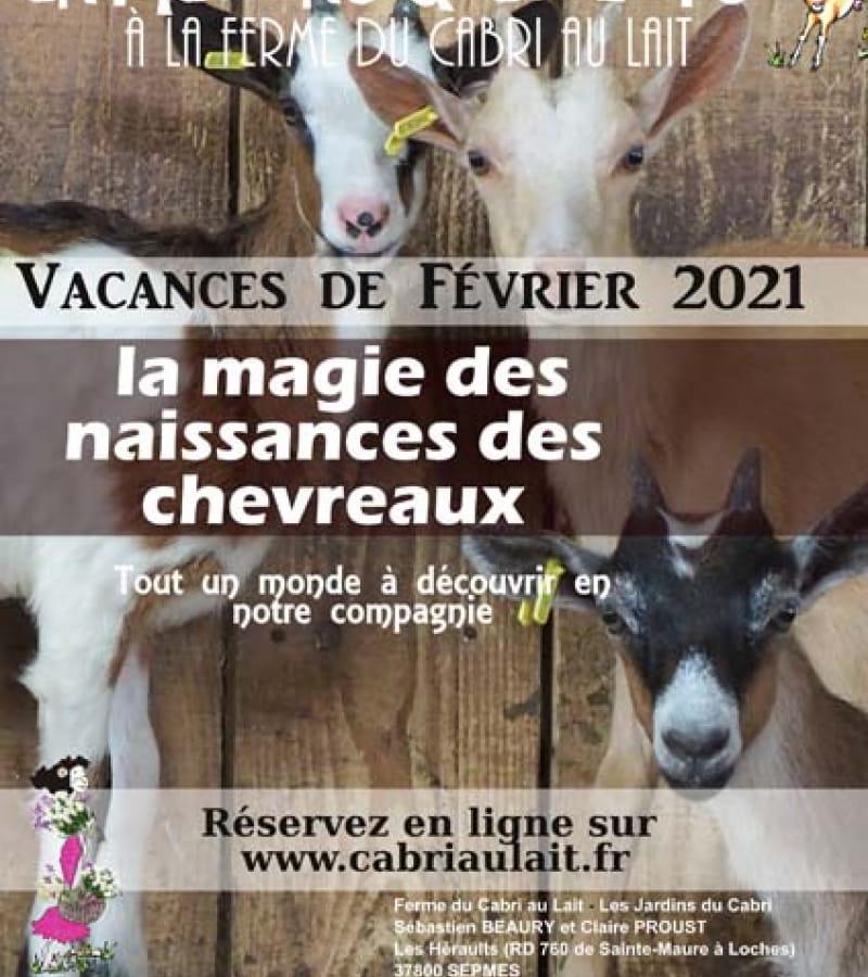 ATELIER_NAISSANCES_chevreaux_2021