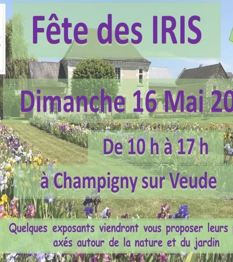 fête des iris Champigny-sur-Veude mai 2021