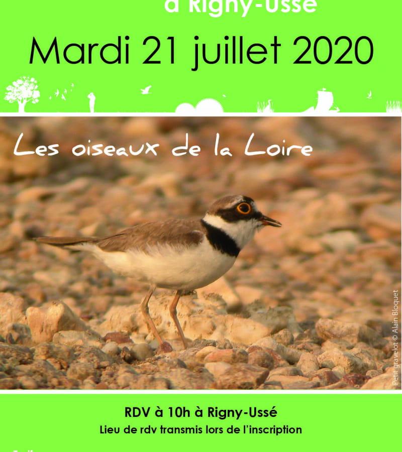 2020_07_21 - Rigny-Ussé