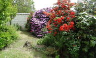 ACVL-SAVIGNY-EN-VERON-GITE-FROMENTAUX-13-Les-Rhododendrons