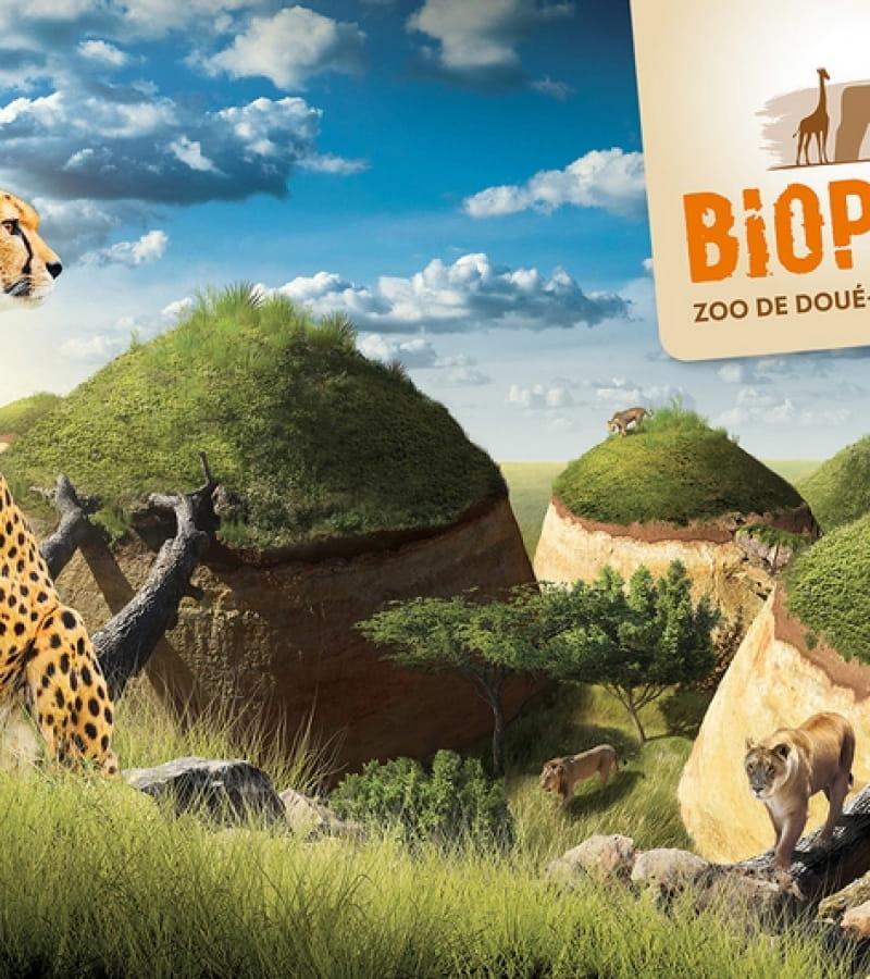 Jeux-et-defis-au-cratere---Bioparc
