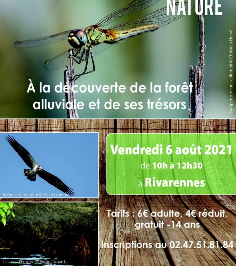 2021_08_06 - Forêt alluviale_Rigny-Ussé