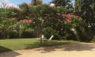 14-La-cour-le-jardin