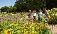 Rivau Visite Nature-Jardins