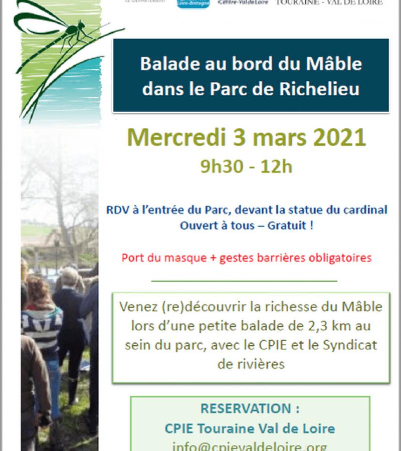 Balade au bord du Mâble parc de  Richelieu mars 2021