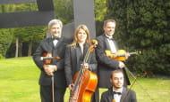 Quatuor Todoroff concert musée Richelieu septembre 2020