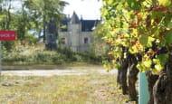 Château de la Grille - Chinon