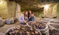 ACVL-SAUMUR-Musee-du-champignon-TrogloNature-
