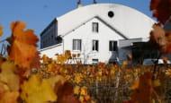 cave des vins de bourgueil - robert et marcel - © robert et marcel