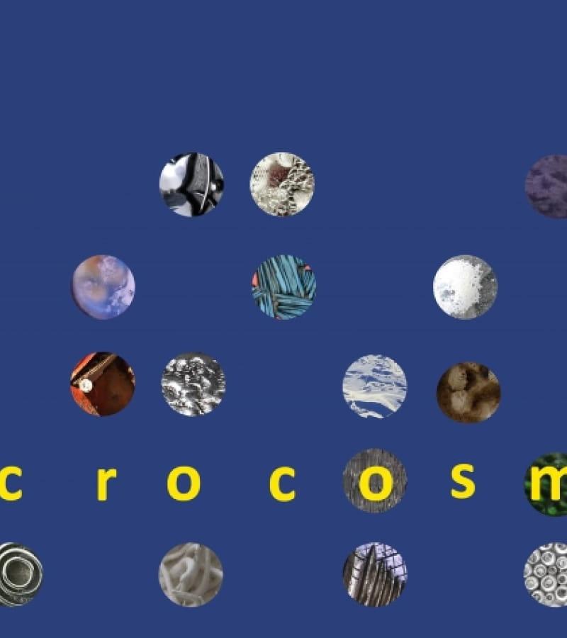 expo-microcosme-chinon