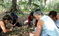 Omtani - Sylvothérapie & Bains de forêt