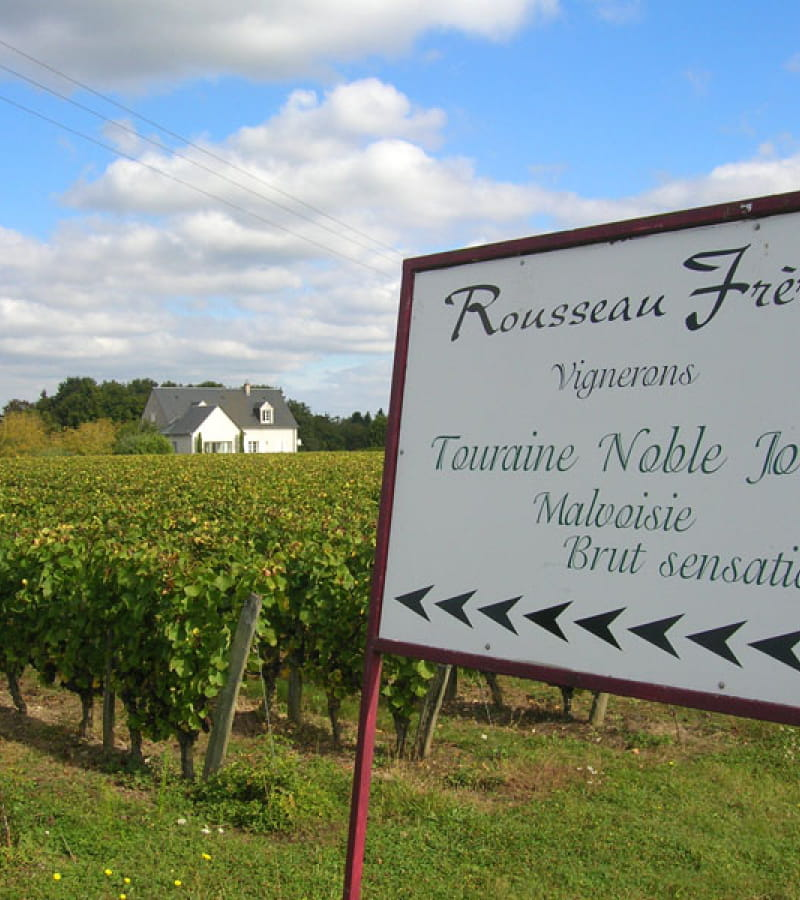 Rousseau Frères vineyard - Esvres-sur-Indre, Loire Valley, France.