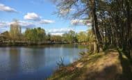 lac_mousseau_avoine