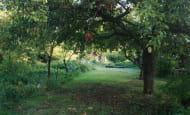 ACVL-RAZINES-Gite-Cote-jardin--1-