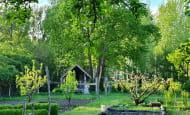 ACVL-RAZINES-Gite-Cote-jardin5_Jardin2